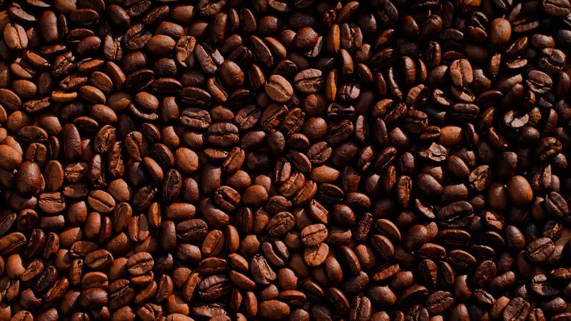 Confira 4 das principais doenças do café do Brasil